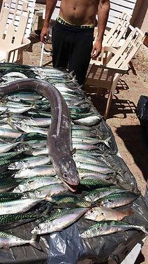 retour d'une belle pêche à la ligne à bord du Port-Grusan