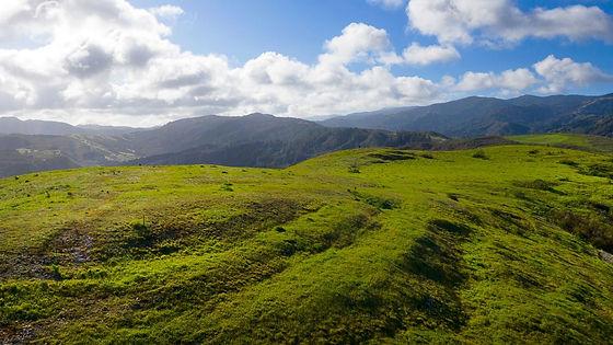 Carmel Valley Legacy Ranch with Coastal Views