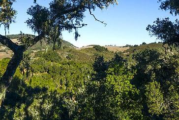 5 Vasquez Trail