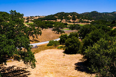 Situated in the private Santa Lucia sun across from the 4th green at the Top-100 Tom Fazio Design, Preserve Golf Club, this 3.96 acre homesite offers golf course and distant ridgeline views. Just 5 minutes from the social heart beat Ranch Club and Golf Clubhouse, this site enjoys an intimate setting partially in the oak trees, with hiking and equestrian trails and the golf course just steps away. Security, water, roads, electricity, cell coverage, fast internet, and fire management infrastructure are all in place ready for you to build your dream home in the Carmel sun.