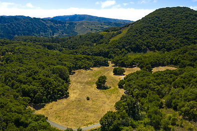 Perfectly situated amongst the heritage oaks on the boarder of fog and sun, lies this 32+ acre equestrian property in the private and secluded Santa Lucia Preserve. Just 7 minutes from the front gate and 15 minutes to Carmel-by-the-Sea, the rolling hill vistas and open savannah pasture offer 3+ acres of buildable space for a main residence, guest house, barn, and horses. Your privacy in nature is protected while amenities are at your fingertips: The Preserve Golf and Ranch Clubs and daily resident services. Security, water, roads, electricity, cell coverage, fast fiber optic internet, and fire management infrastructure are all in place ready for you to build your dream home in Carmel.