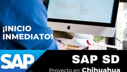 Vacante Consultor SAP SD Sr. para Chihuahua, Chi.
