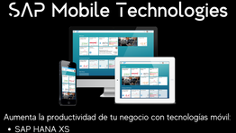 SAP Mobile Technologies