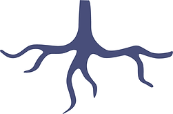 JustRoot_Blue.png