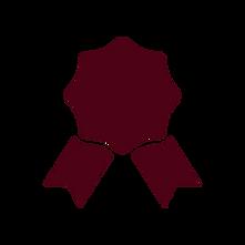 noun_Award_red.png