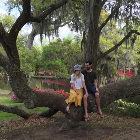 Savannah + Charleston Travel Guide