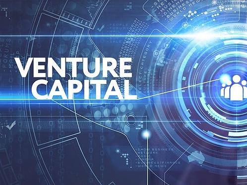Venture Capitalist Report Template