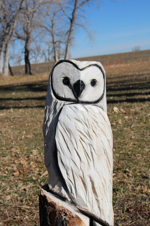 Ft white owl chainsaw carving