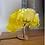 Thumbnail: Araguaney tree Acrylic