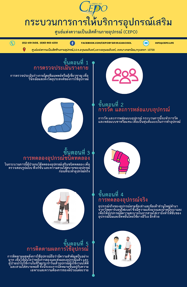 orthotic process infographic thai.png