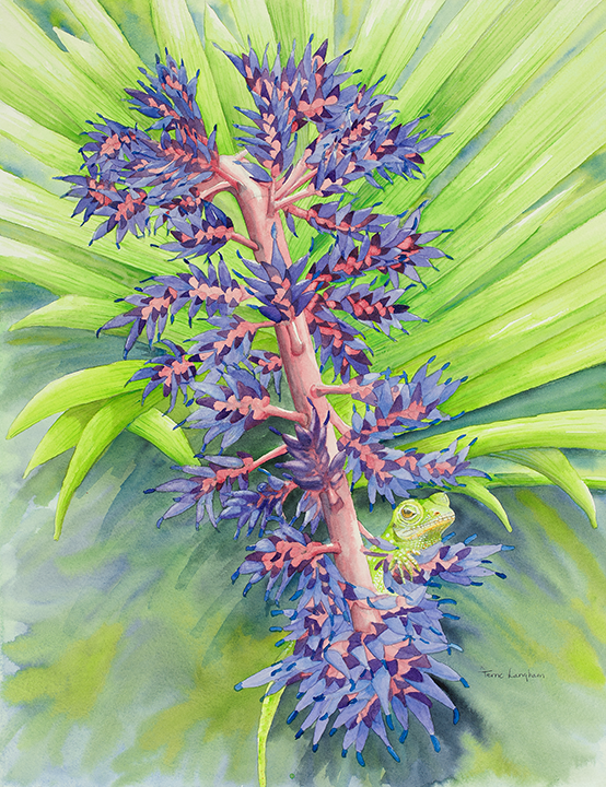 Anole Hanging in Aechmea