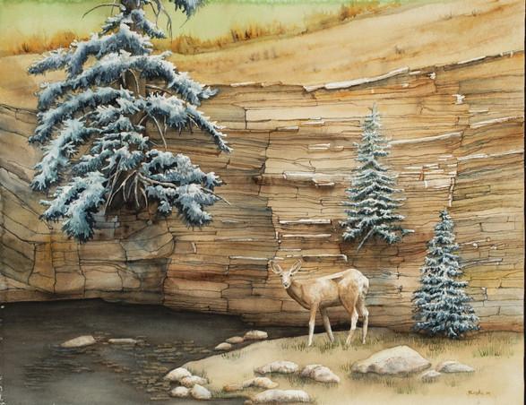 Deer by Waters Edge