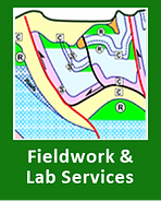 Fieldwork & Lab.png