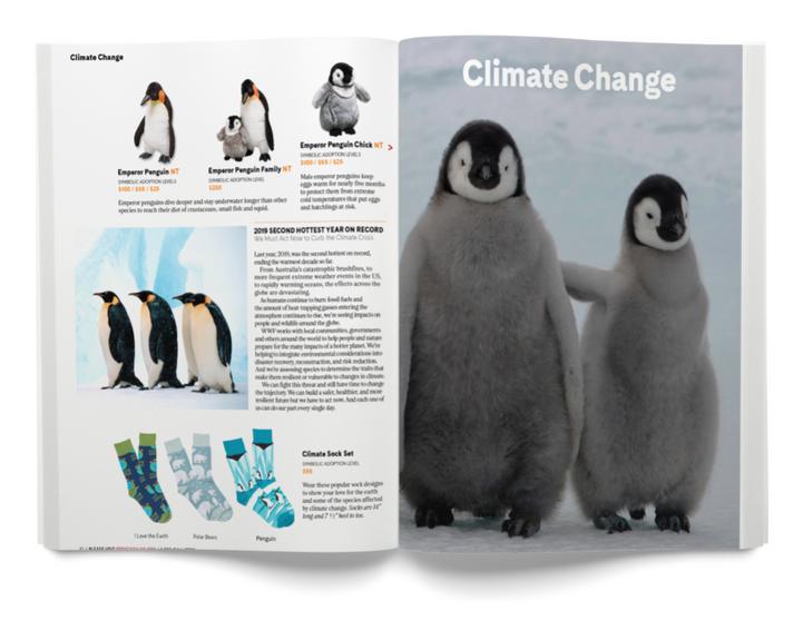 Magazine 0006-2 2020-07-16.png