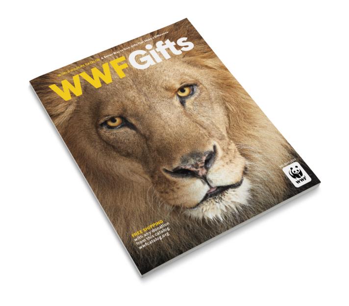 Magazine 0127 2020-07-16.png