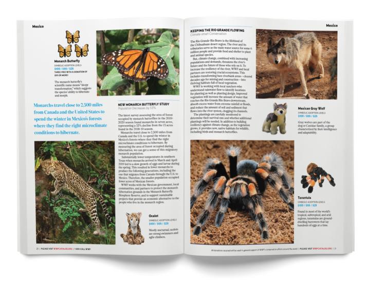 Magazine 0006-3 2020-07-16.png
