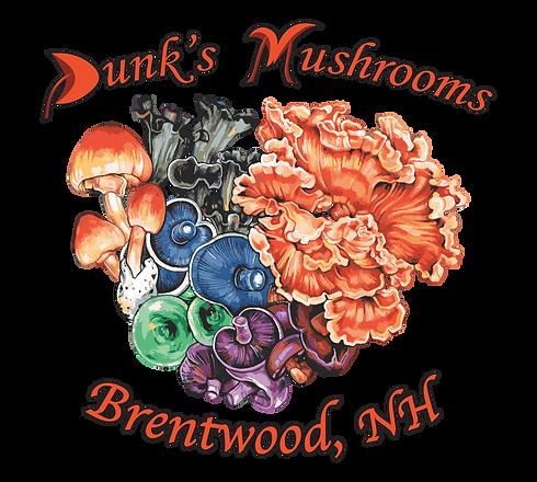dunksmushrooms (T-shirt) (2).png