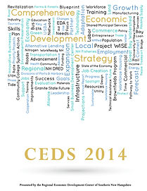 REDC CEDS 2014 Cover Art