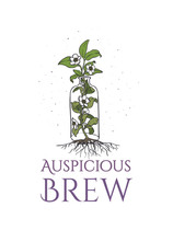 Client Spotlight: Auspicious Brew