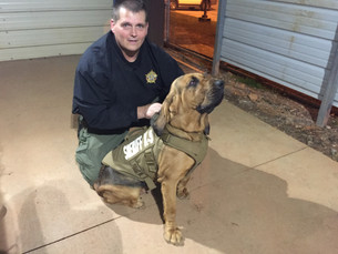 Laurens County Sheriff's Office K9's Annie & Sandy Have Received Body Armor