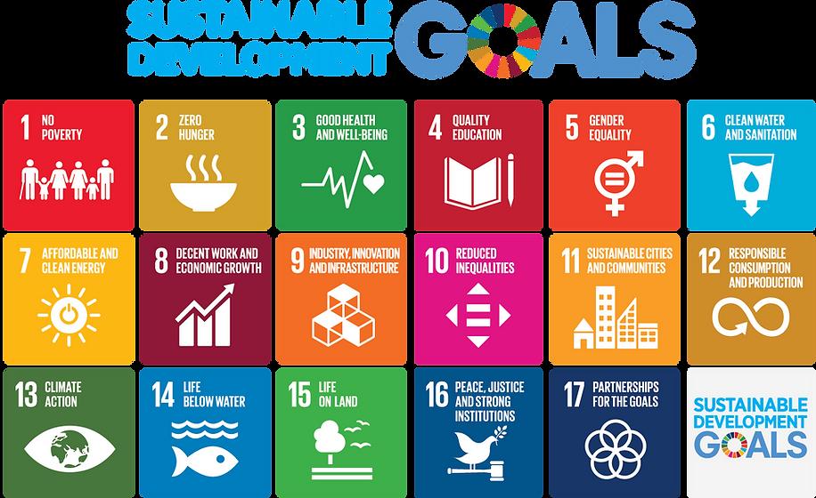 Image: UN SDGs