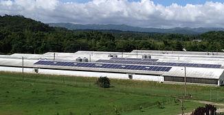 Solar R&D Poultry Farm_edited.jpg