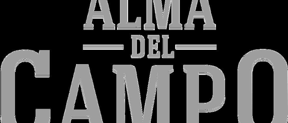 Plasencia Alma Del Campo Tribu (5 x 52), Box of 10 + Ashtray