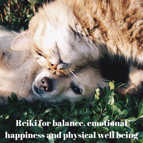 Reiki for balance, emotional happiness a