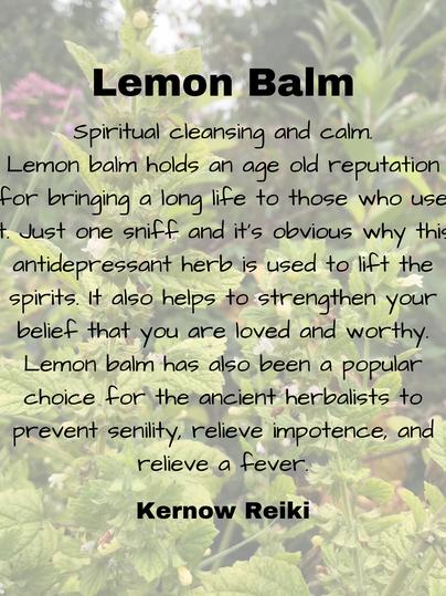 Lemon Balm.png