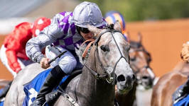 Havana Grey winning at the curragh_edite