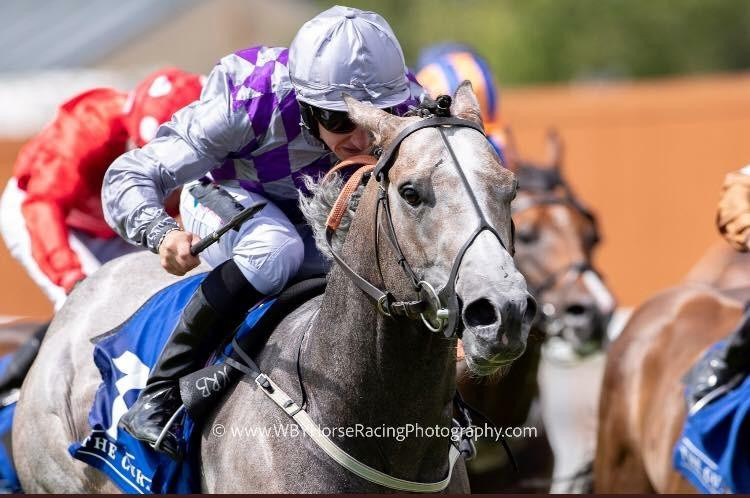 Havana Grey winning at the curragh.jpeg
