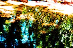 Reflection_DSC5219