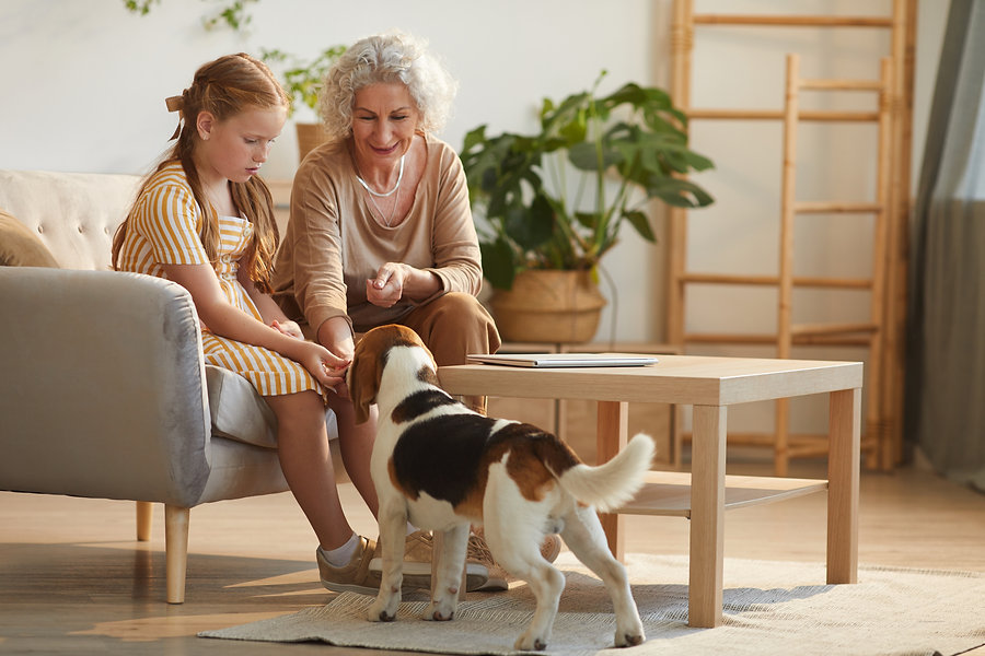 happy-grandmother-playing-with-pet-dog-L