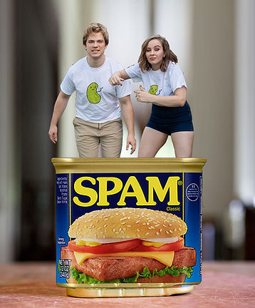 Dont Leave Us in Spam 3.jpg