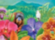 12579-Orchids-Website-Banner_V1_edited.j