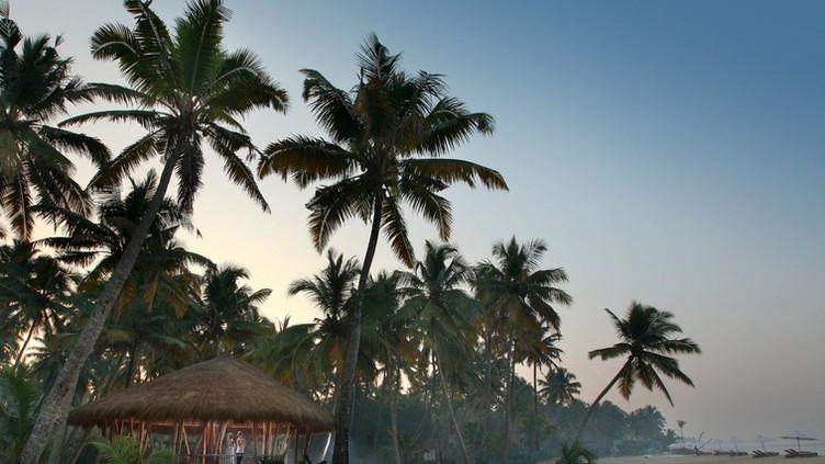 Carnoustie Ayurveda and Wellness Resort, India
