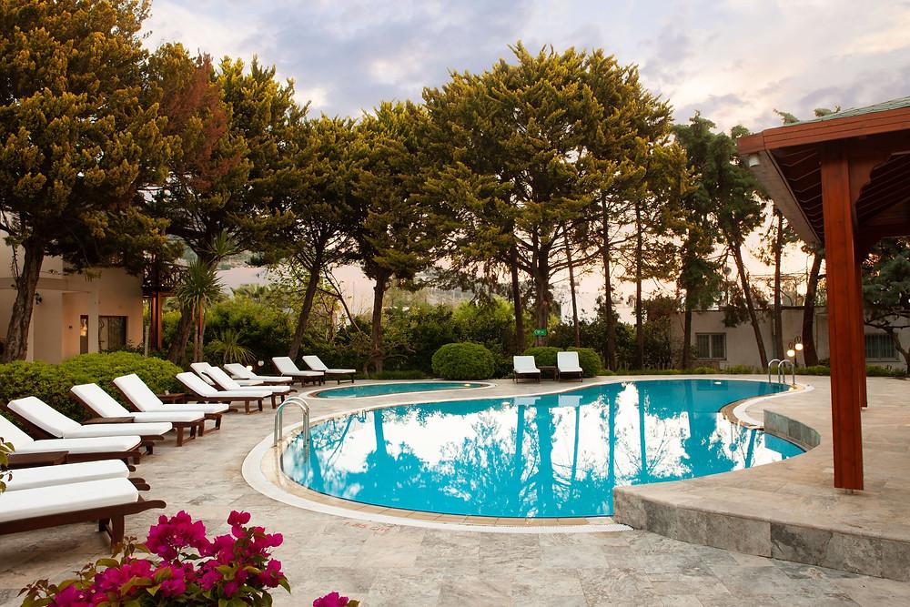 relaxing swimming pool in the sun