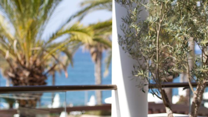 Annabelle, Cyprus