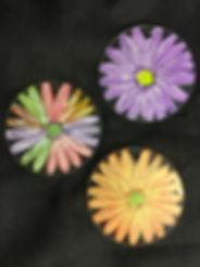 DaisySuncatchers.jpg