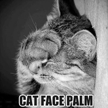 feline_facepalm_by_rogue_ranger