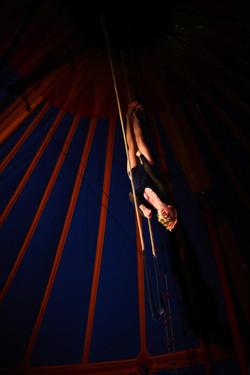 trapeze tat _8378