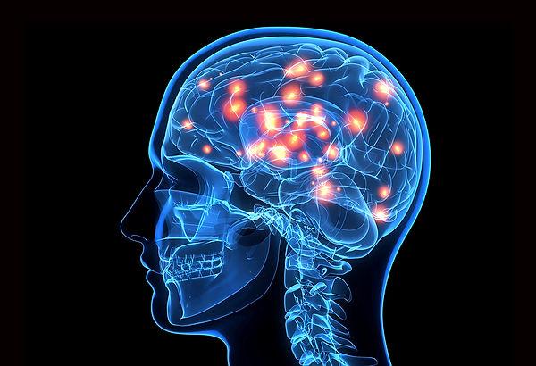 SNC-Integrated-Neuro.jpg