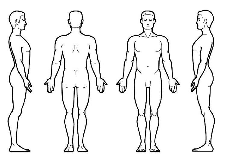 Body Line Art.jpg