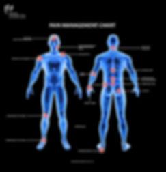 SNC Website - Pain Body.jpg