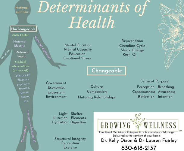 Determinants of Health (1).png