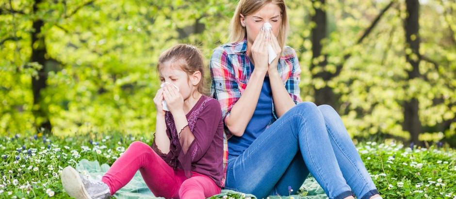 Get relief & avoid side-eye this allergy season