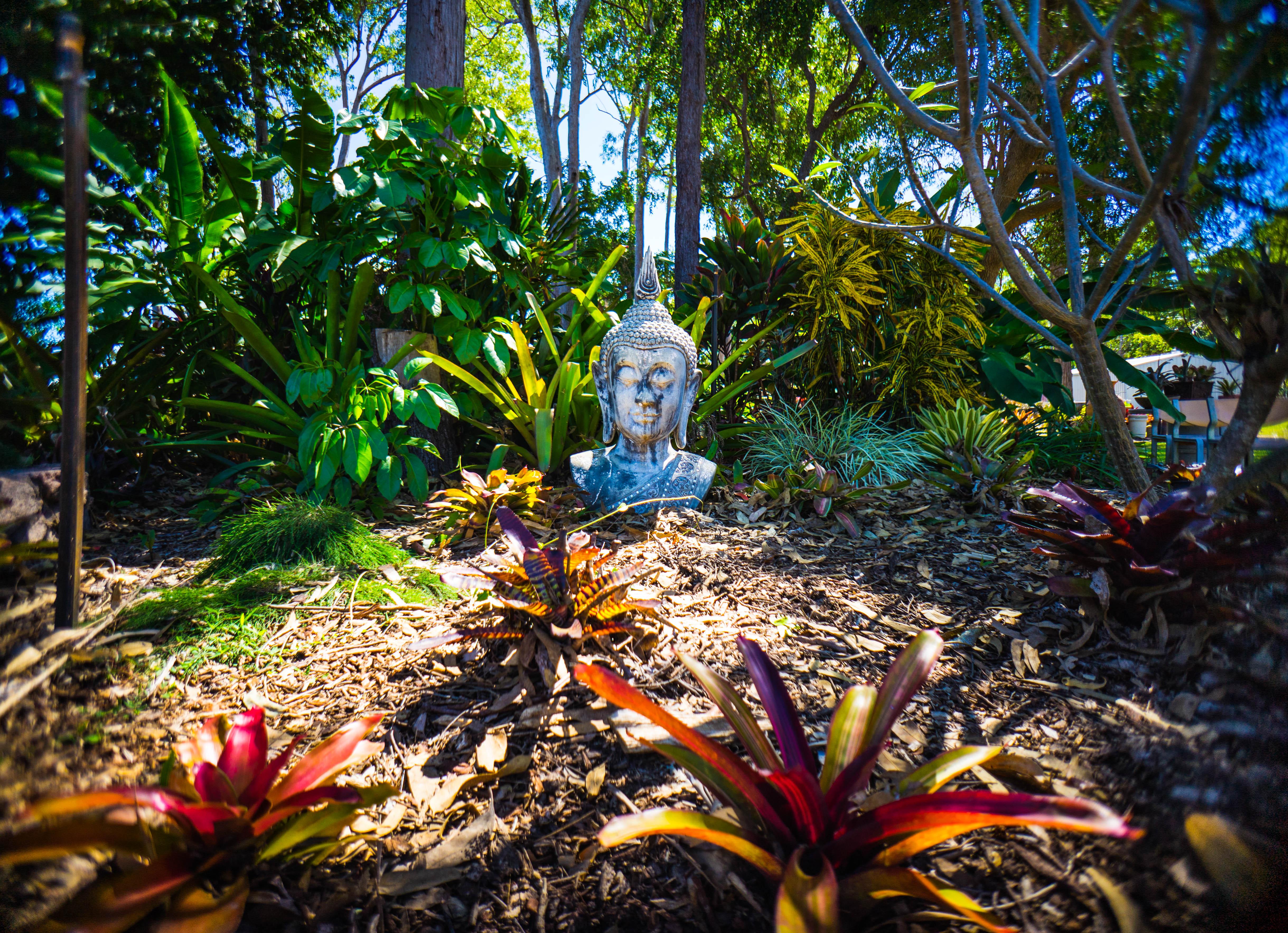 Darwin display gardens