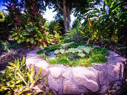 Territory Exotics and Watergardens
