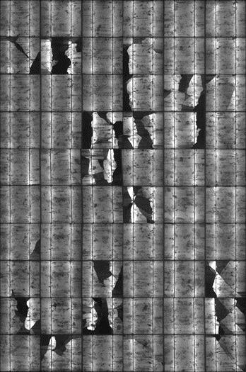 クラックにより出力低下が生じている太陽電池(画像中の黒い部分は発電が損失している)