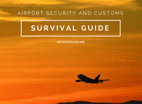 Airport Security and Customs Survival Guide